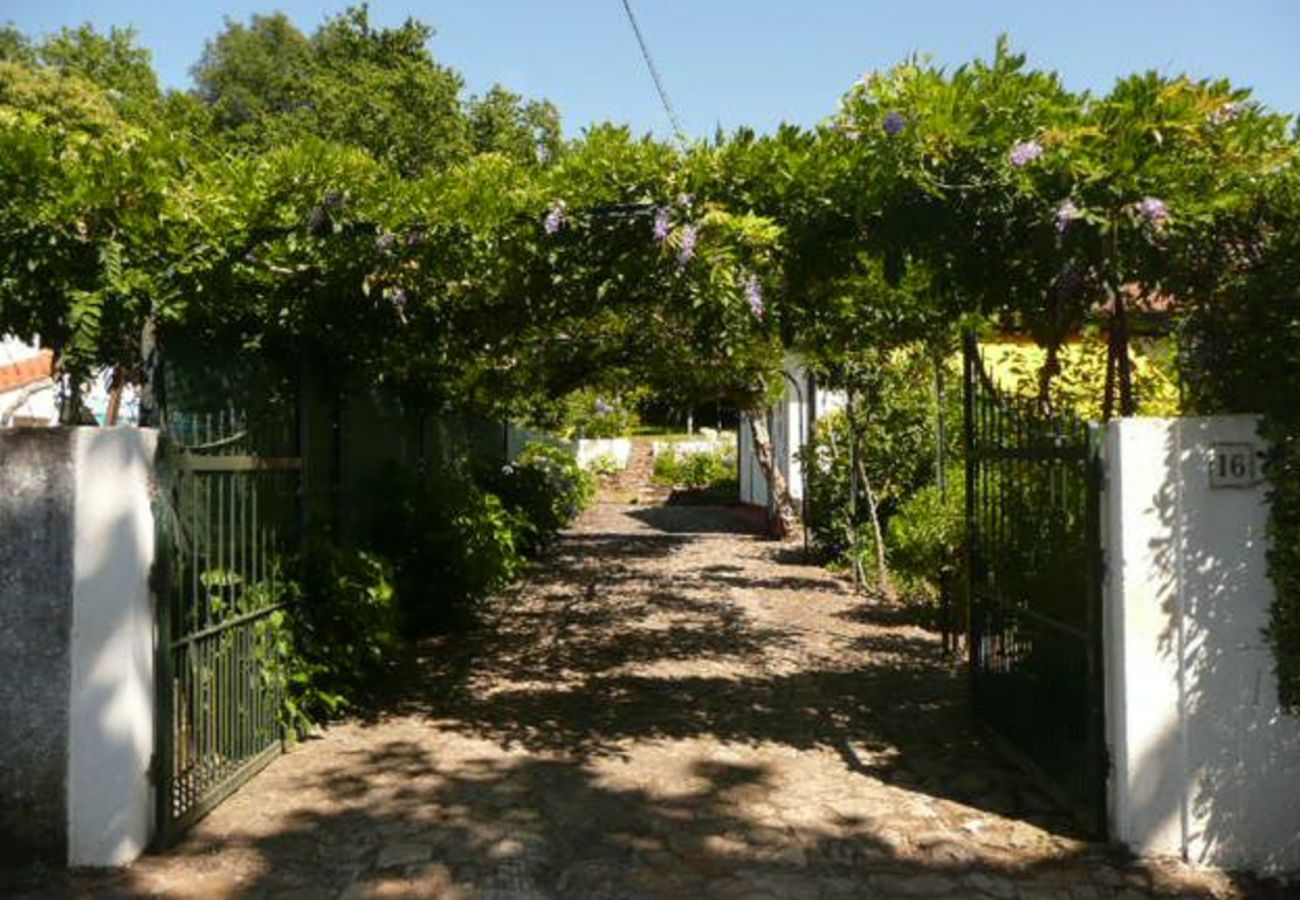 House rental in Caminha - garden, by iZiBookings